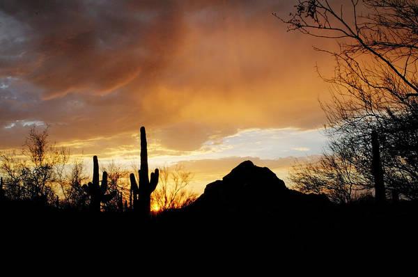 Photograph - Sunset Drama by Tam Ryan