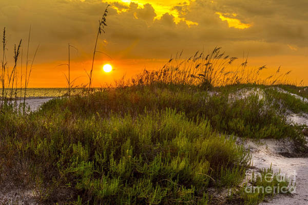 Sand Dunes Photograph - Sunset Dunes by Marvin Spates