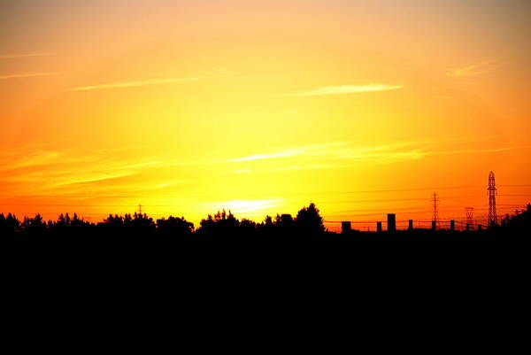 Photograph - Sunset Glow by Rachael Shaw