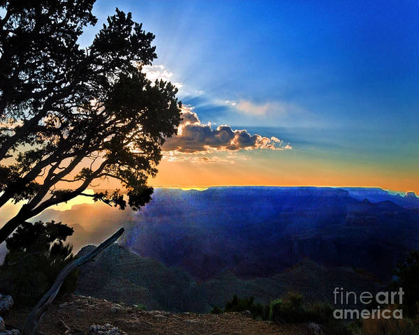 Photograph - Sunset Grand Canyon by Bob and Nadine Johnston