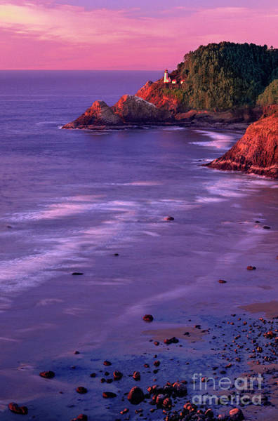 Photograph - Sunset Heceta Head Lighthouse Cerntral Coast Oregon by Dave Welling