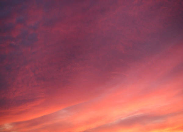 Wall Art - Photograph - Sunset Hues by Laurie Stewart
