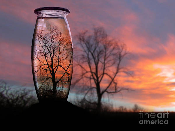 Photograph - Sunset In A Bottle by Cindy Singleton