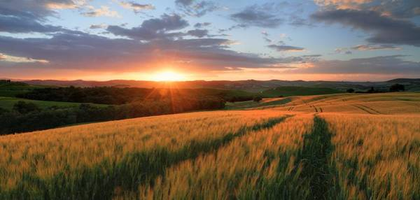 Tuscany Photograph - Sunset In A Field In Tuscany by © Jan Zwilling