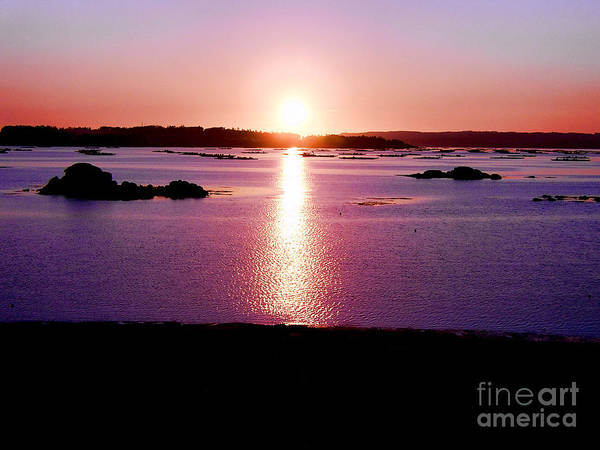 Galicia Photograph - Sunset In Galicia by Lynn Bolt
