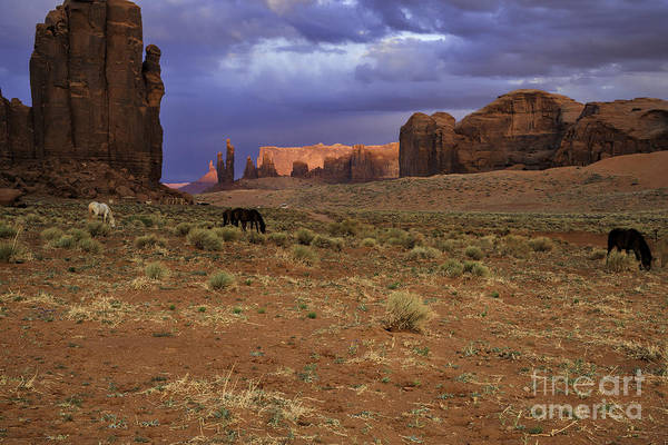 Photograph - Sunset In Monument Valley by Stuart Gordon