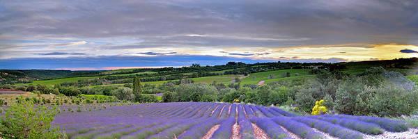 Sunset In Provence Art Print
