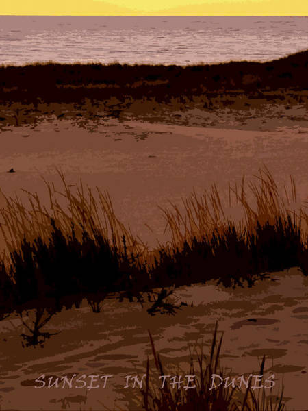 Photograph - Sunset In The Dunes by Michelle Calkins