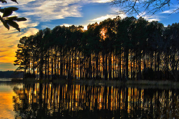 Wilderness Wall Art - Photograph - Sunset In The Park by Frank Savarese