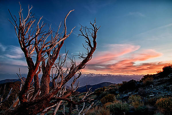 Mountain Sunset Photograph - Sunset In The Whites by Cat Connor