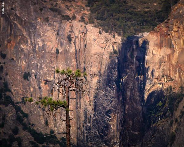 Photograph - Sunset In Yosemite by Alexander Fedin