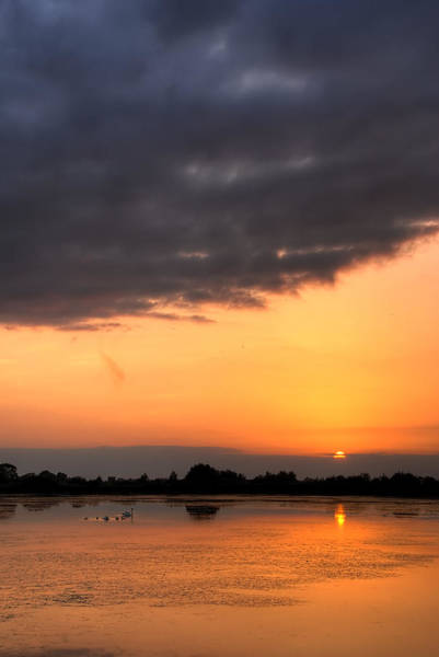Swan Photograph - Sunset by Jaroslaw Grudzinski