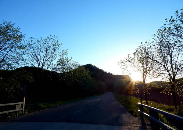 Photograph - Sunset Lane by Wild Thing