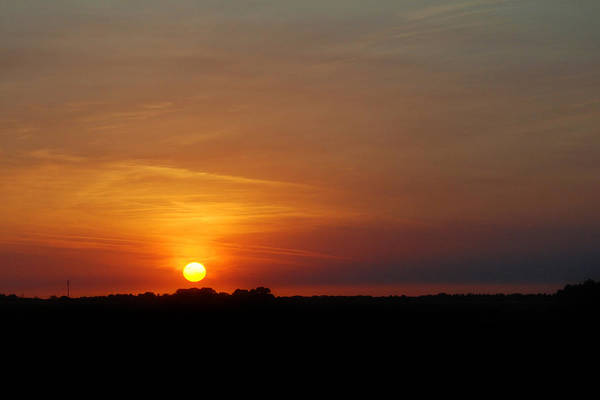 Photograph - Sunset by Larah McElroy