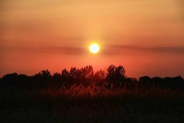 Wall Art - Photograph - Sunset Lighting by Dan Sproul