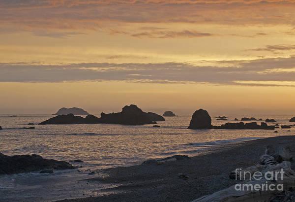 Photograph - Sunset  by Lula Adams