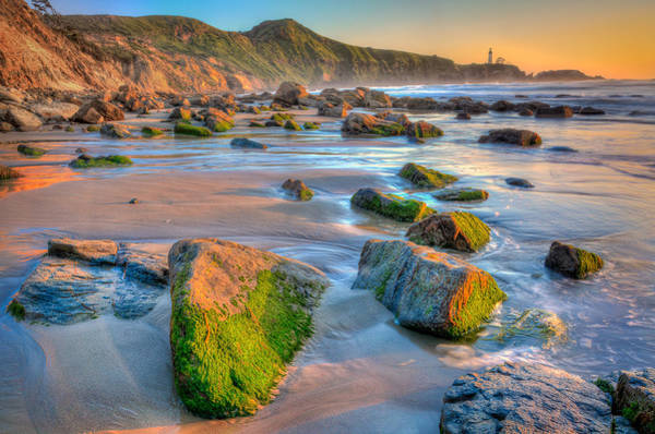 Photograph - Sunset Near Yaquina Lighthouse by Michael Ash