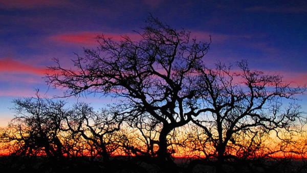 Figueroa Mountain Photograph - Sunset On Figuero Mountain by Lynn Andrews