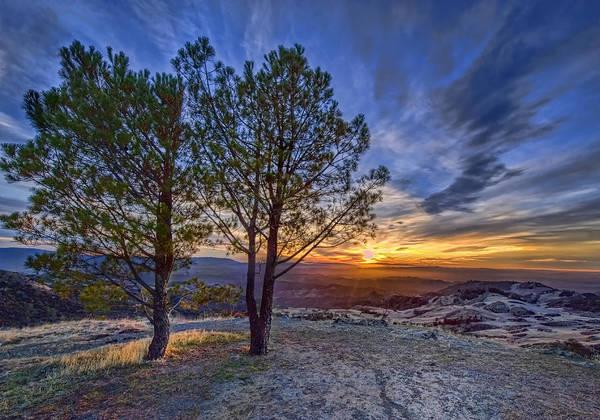 Figueroa Mountain Photograph - Sunset On Figueroa Mountain by Lynn Andrews
