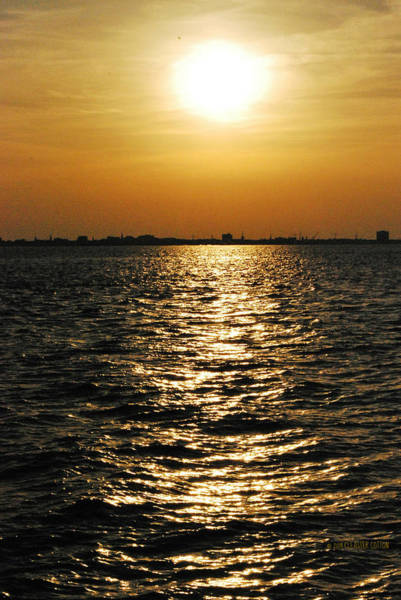 Photograph - Sunset On Sullivan's Island by Cleaster Cotton copyright