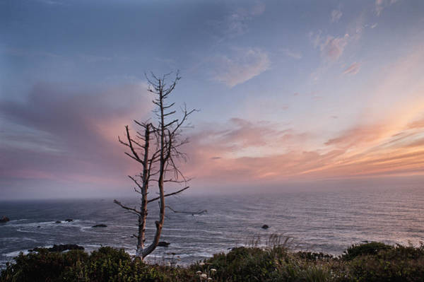 Photograph - Sunset On The California Coast by Melany Sarafis