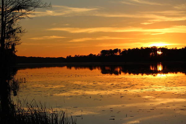 Photograph - Sunset On The Lake by Cynthia Guinn