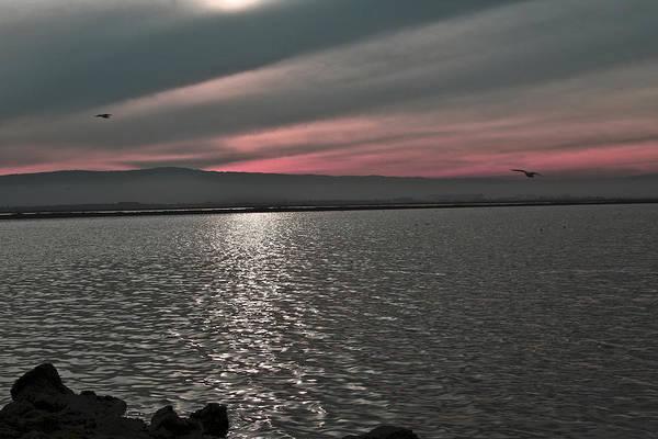 Alviso Photograph - Sunset On The Marsh by SC Heffner