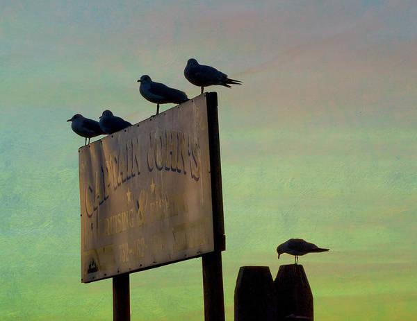 Sunset On The Sign Art Print
