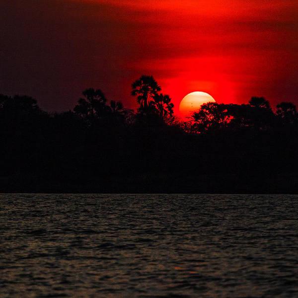 Photograph - Sunset On The Zambezi  by John  Nickerson