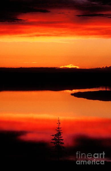 Photograph - Sunset On Whitefish Lake Norhwest Territories Canada by Dave Welling