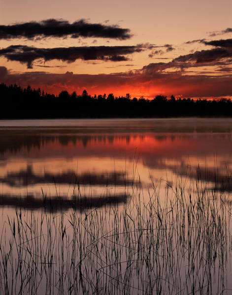 June Lake Photograph - Sunset Over A Lake by Bjorn Svensson/science Photo Library