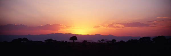 Tarangire Photograph - Sunset Over A Landscape, Tarangire by Panoramic Images