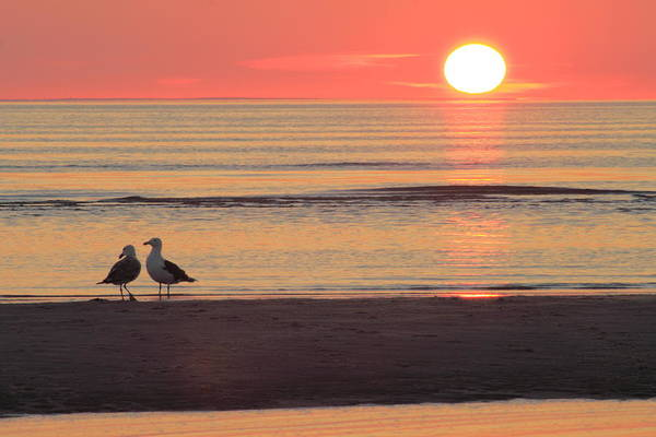 Encounter Bay Photograph - Sunset Over Cape Cod Bay by John Burk