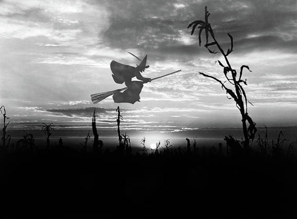 Wiccan Painting - Sunset Over Cornfield With Silhouette by Vintage Images