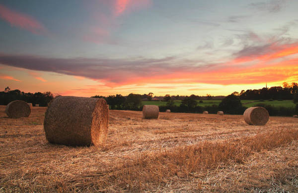 Warwickshire Photograph - Sunset Over Field Of Hay Bales by Verity E. Milligan