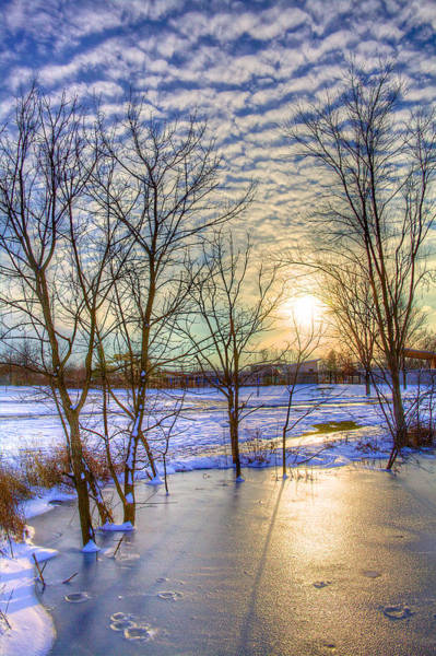 Wall Art - Photograph - Sunset Over Ice by William Wetmore