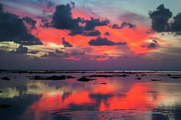 Rarotonga Photograph - Sunset Over Lagoon by Dallas Stribley