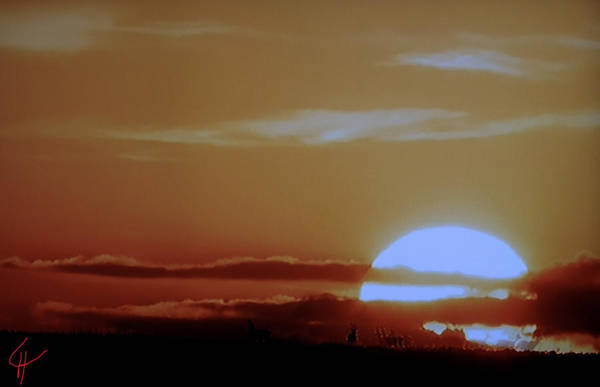 Photograph - Sunset Over The Field by Colette V Hera  Guggenheim