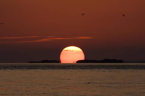 Photograph - Sunset Over The Keys by Adam Romanowicz