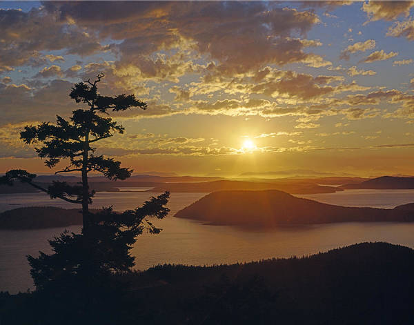 Photograph - Sunset Over The Rosario Strait by Ed  Cooper Photography