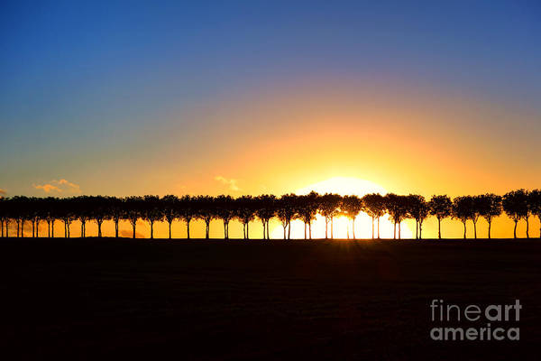 Wall Art - Photograph - Sunset Over Tree Lined Road by Olivier Le Queinec