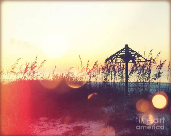 Wall Art - Photograph - Sunset Palm IIi by Chris Andruskiewicz