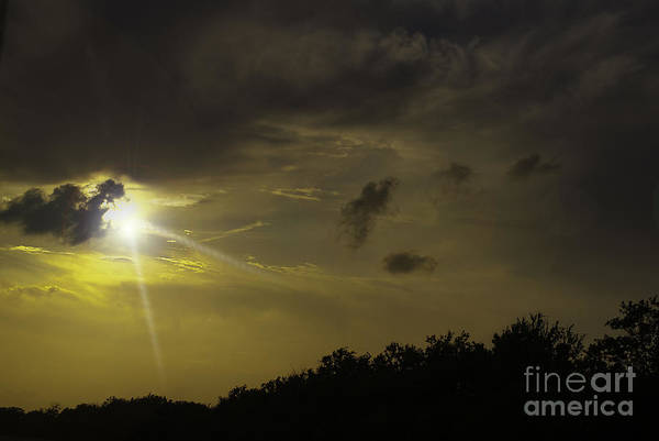 Photograph - Sunset Radiance by Judy Hall-Folde