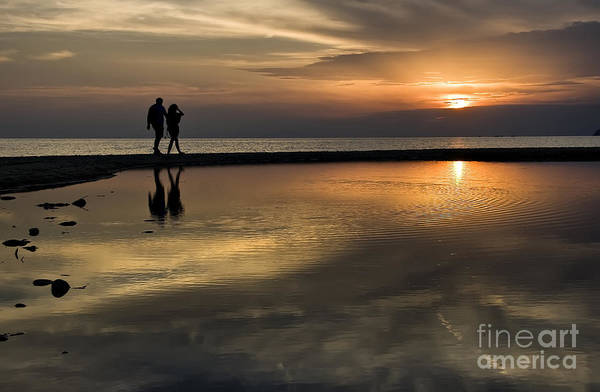 Photograph - Sunset Reflection And Silhouettes by Daliana Pacuraru