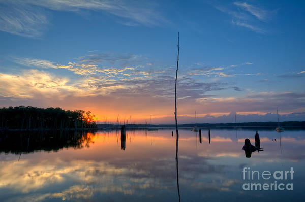Nikon Wall Art - Photograph - Sunset Reflections by Michael Ver Sprill