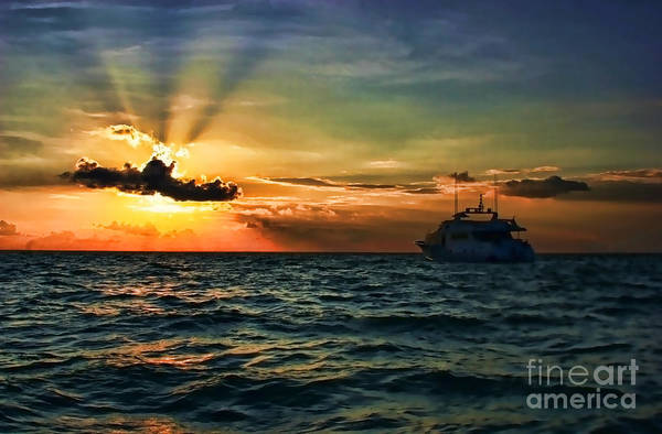 Photograph - Sunset Regatta  by Diana Raquel Sainz