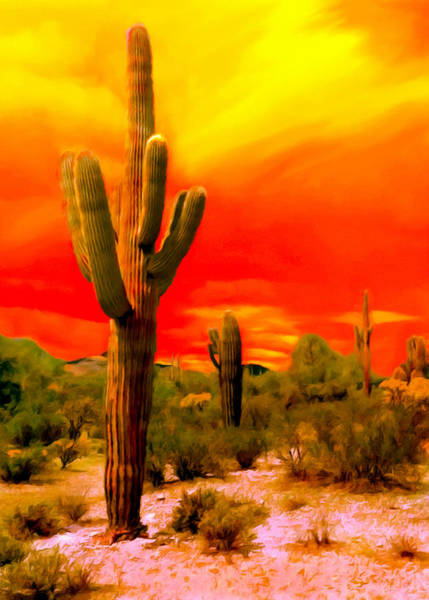 Wall Art - Painting - Sunset Saguaro National Park Arizona by Bob and Nadine Johnston