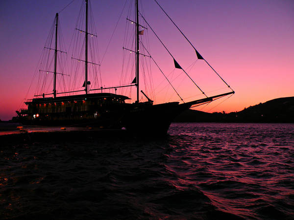 Photograph - Sunset Sail by Micki Findlay