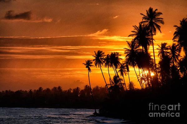 Photograph - Sunset Salinas Puerto Rico by Charlie Roman