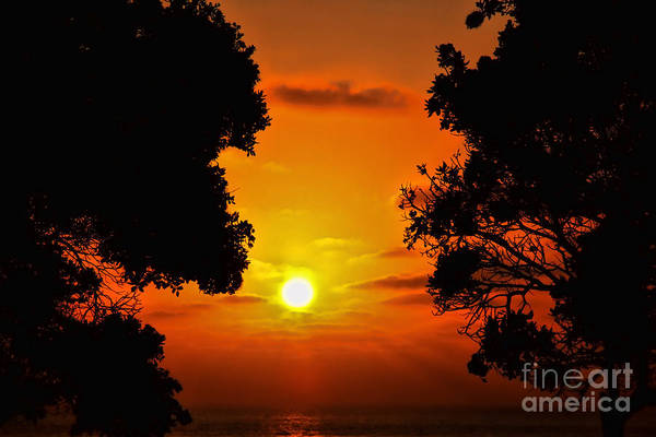 Photograph - Sunset Silhouette By Diana Sainz by Diana Raquel Sainz